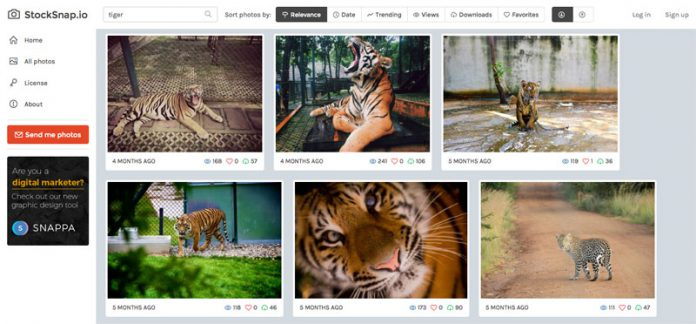 StockSnap: Beautiful free stock photos