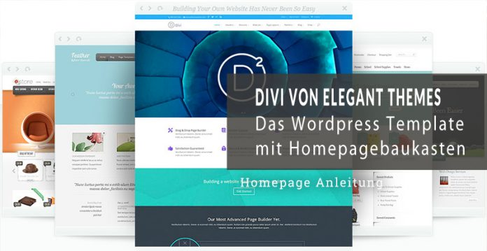 Divi 3.0 Theme Test